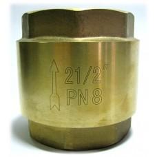 "Обратный клапан 2 1/2"" пласт. затвор"